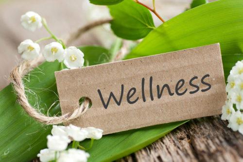 Camping Irene Hoeve | Wellness