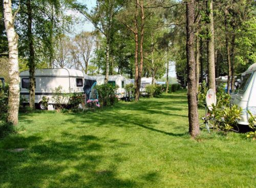 Camping Irene Hoeve   Camping