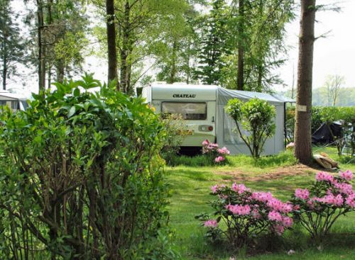 Camping Irene Hoeve   Voorzieningen